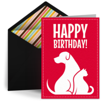 Dogs and Cats card image